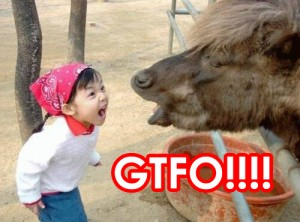 a girl and horse screaming at each other